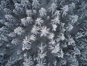 Begrenze Zeit für Winterfotos